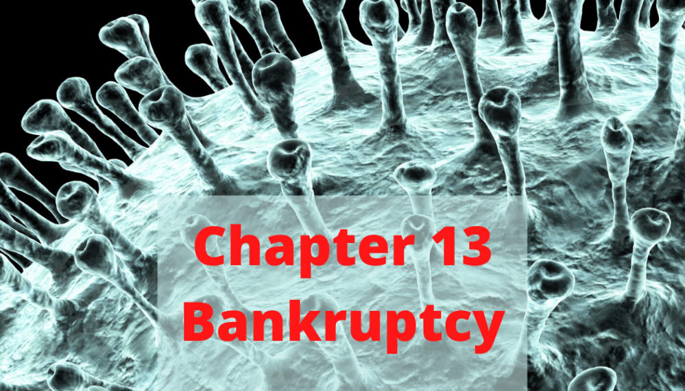 Chapter 13 Cases during the COVID-19 Crisis