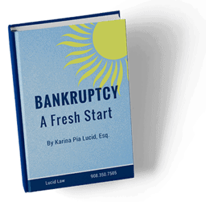 Bankruptcy A Fresh Start by Karina Pia Lucid, Esq.